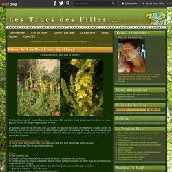 Sirop de bouillon blanc (molène) - Les Trucs des Filles...