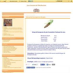 Sirop de bourgeons de pin - Le blog de L'herboriste