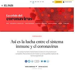 Así es la lucha entre el sistema inmune y el coronavirus