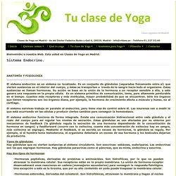Sistema endocrino en yoga