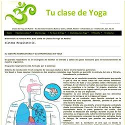 Sistema respiratorio en Yoga