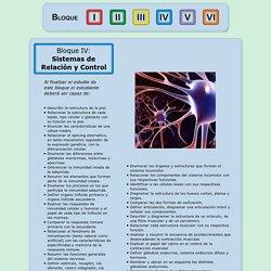 Bloque IV: Sistemas de Relación y Control