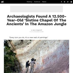 'Sistine Chapel Of The Ancients' Rock Art Found Deep In Amazon Jungle