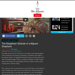 The Sisyphean Solitude of a Migrant Shepherd