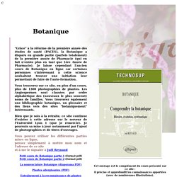 cours de botanique pearltrees. Black Bedroom Furniture Sets. Home Design Ideas