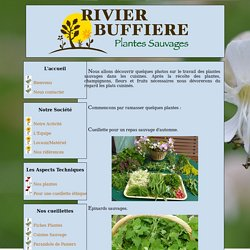 Site de la SCP Rivier-Buffiere
