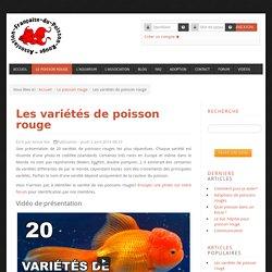 Le site du Poisson Rouge - Les variétés de poisson rouge