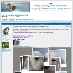 Sites de montage de photo en ligne