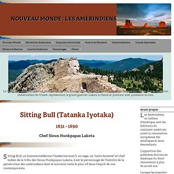 Sitting Bull (1831-1890), Chef Sioux Hunkpapas Lakota