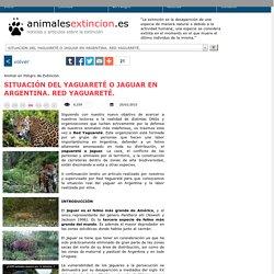 SITUACIÓN DEL YAGUARETÉ O JAGUAR EN ARGENTINA. RED YAGUARETÉ., Animal en Peligro de Extinción