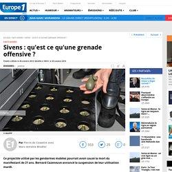 28/10/14 Sivens : qu'est ce qu'une grenade offensive ?