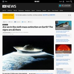 Are we in the sixth mass extinction on Earth? The signs are all there