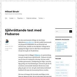 Självrättande test med Flubaroo – Mikael Bruér