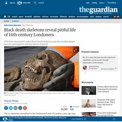 Black death was not spread by rat fleas, say researchers | Science | The Observer