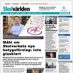 Måhl om Skolverkets nya betygsförslag: Inte glasklart