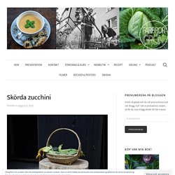 Skörda zucchini
