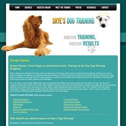 Skye's Dog Training