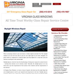 Broken Skylight Repair Services – Virginia Glass Windows