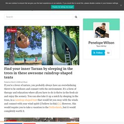 Find your inner Tarzan by sleeping in the trees in these awesome raindrop-shaped tents