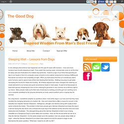 Sleeping Well – Lessons from Dogs