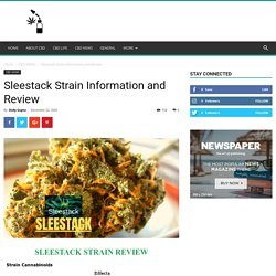 Sleestack Strain Information and Review