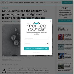 DNA sleuths read the coronavirus genome, tracing its origins
