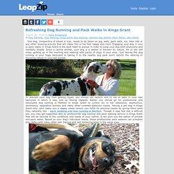 Cara Slingeland's blog: Refreshing Dog Running and Pack Walks in Kings Grant