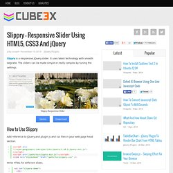 Slippry - Responsive Slider Using HTML5, CSS3 And jQuery - Cube3x