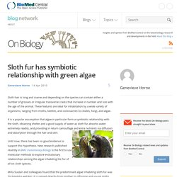 Sloth fur has symbiotic relationship with green algae