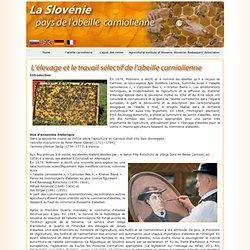 Slovenija - domovina kranjske čebele