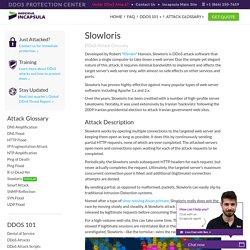 DDoS Attack Glossary
