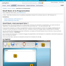 Small Basic et la Programmation