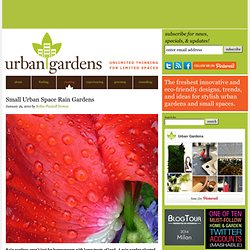 Small Urban Space Rain Gardens