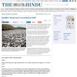 Smaller 'dead zone' recorded in Gulf