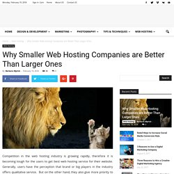 Why Smaller Web Hosting Companies are Better Than Larger Ones