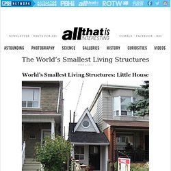 The World's Smallest Living Structures