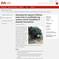 NATIONAL VETERINARY INSTITUTE (SVA_SE) 22/04/15 Projet de recherche 2013-2015 - Assessing the impacts of African swine fever in smallholder pig systems and the feasability of potential interventions