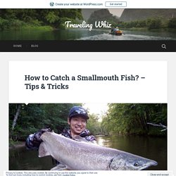 How to Catch a Smallmouth Fish? – Tips & Tricks – Traveling Whiz