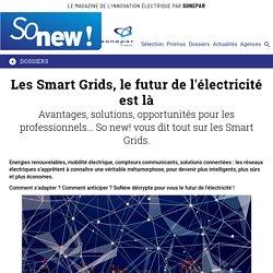 Les Smart Grids, le futur de l'électricité est là