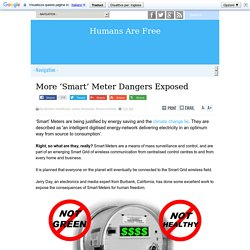 More 'Smart' Meter Dangers Exposed