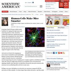 Human Cells Make Mice Smarter