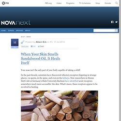 When Your Skin Smells Sandalwood Oil, It Heals Itself — NOVA Next