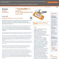 Blog OpenERP, l'ERP qui est aussi un CMS !