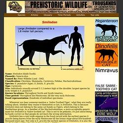 Prehistoric Wildlife