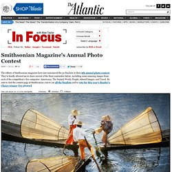 Smithsonian Magazine's Annual Photo Contest - In Focus