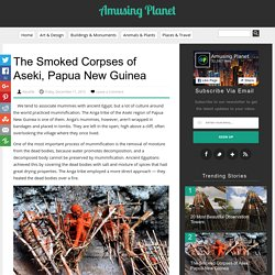 The Smoked Corpses of Aseki, Papua New Guinea