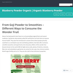 Purchase Organic Goji Berry Powder Online at Best Prices