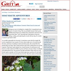 White Snakeroot and Goats - Goat Haute Adventures Blog
