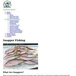 Snapper Fishing Key West - Captain Moe's Lucky Fleet