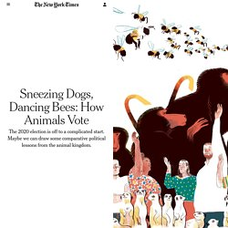 Sneezing Dogs, Dancing Bees: How Animals Vote